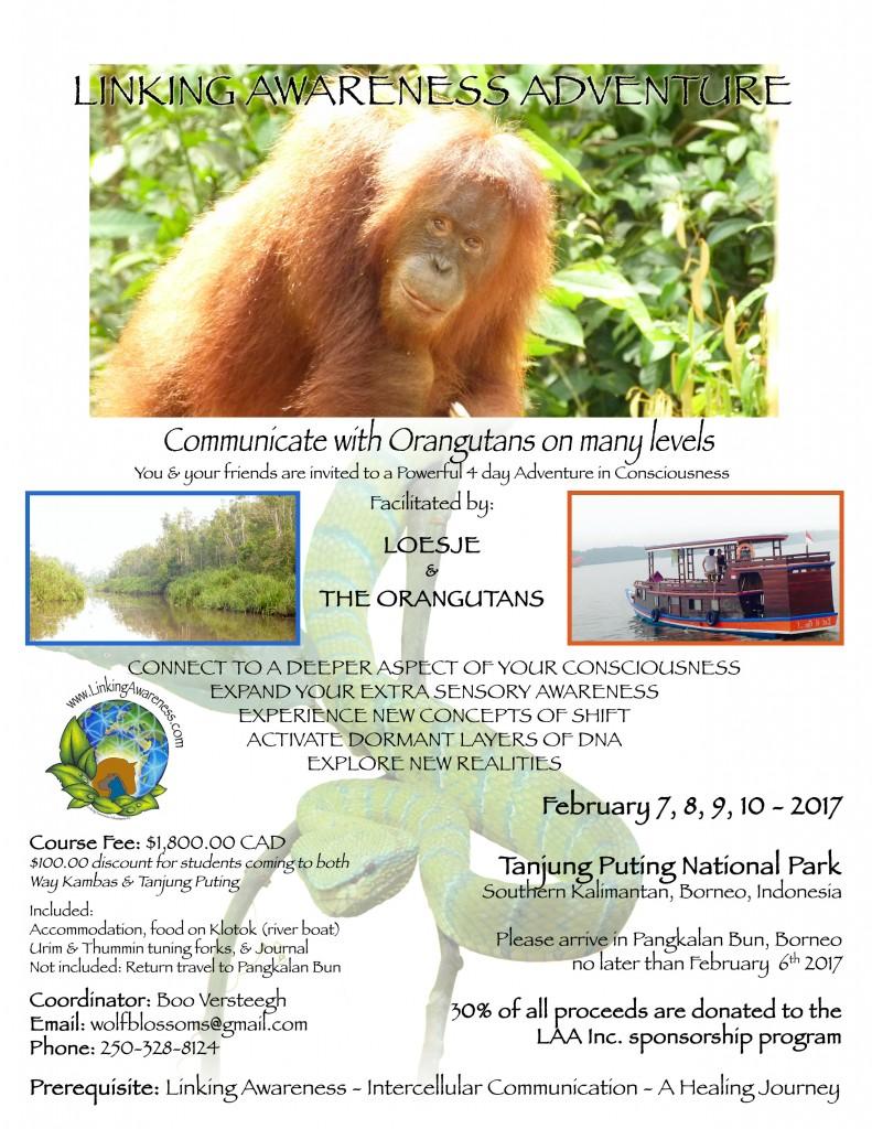 Linking Awareness Adventure-Borneo-Feb-2017